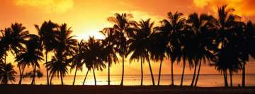 Orange Sunset Palms Beach Facebook Banner