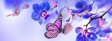 Orchid with Butterflies Facebook Cover-ups