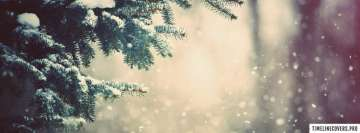 Pinewood Winter Snow Facebook Background TimeLine Cover
