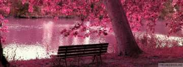 Pink Tree Girly Facebook Wall Image