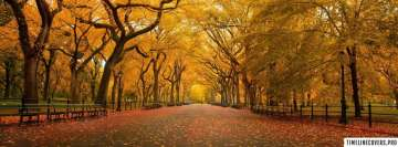 Quiet Autumn Park Facebook cover photo