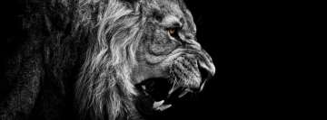 Roaring Lion Facebook Background TimeLine Cover