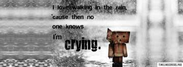 Sad Love Walking in The Rain Facebook Wall Image
