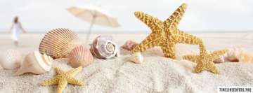 Seashells and Starfish Fb Cover