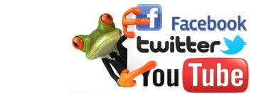 Social Media Frog Facebook cover photo