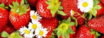 Strawberry with Flowers Facebook Background