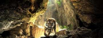 Tiger at a Cave Facebook Wall Image