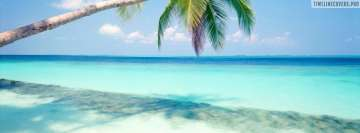 Tropical Island with Palm Tree Facebook Wall Image