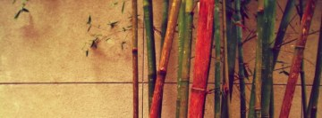 Vintage Bamboo Facebook Background TimeLine Cover