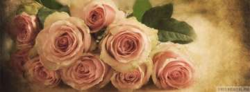 Vintage Soft Pink Roses Facebook Cover Photo