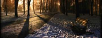 Winter Sunbeams in The Park Facebook cover photo