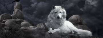 Wise Lonely Wolf Night Guard Facebook Wall Image
