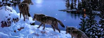 Wolfs in a Journey Facebook Cover Photo