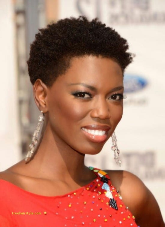 best of beautiful afro styles for african ladies with short natural hair