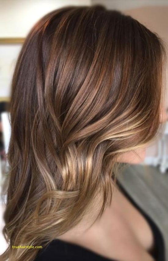 awesome unique milk chocolate brown hair color today