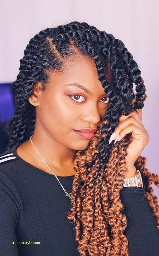 beautiful passion twists hairstyle of all time 1
