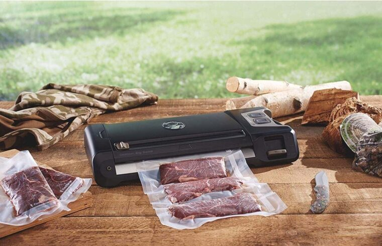Best Vacuum Sealers For Fish And Games 2