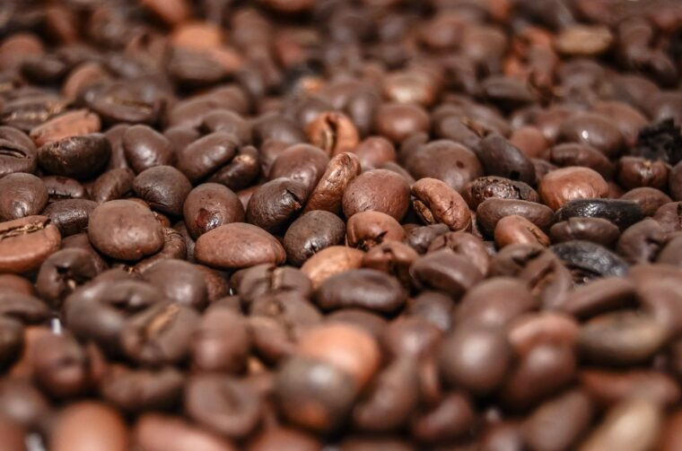 5 Useful Tips for Maintaining Your Coffee Maker at Home 2