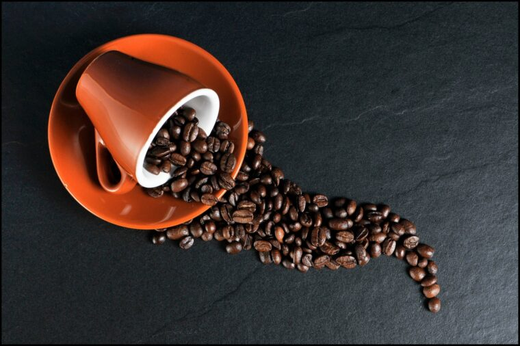 5 Useful Tips for Maintaining Your Coffee Maker at Home 1