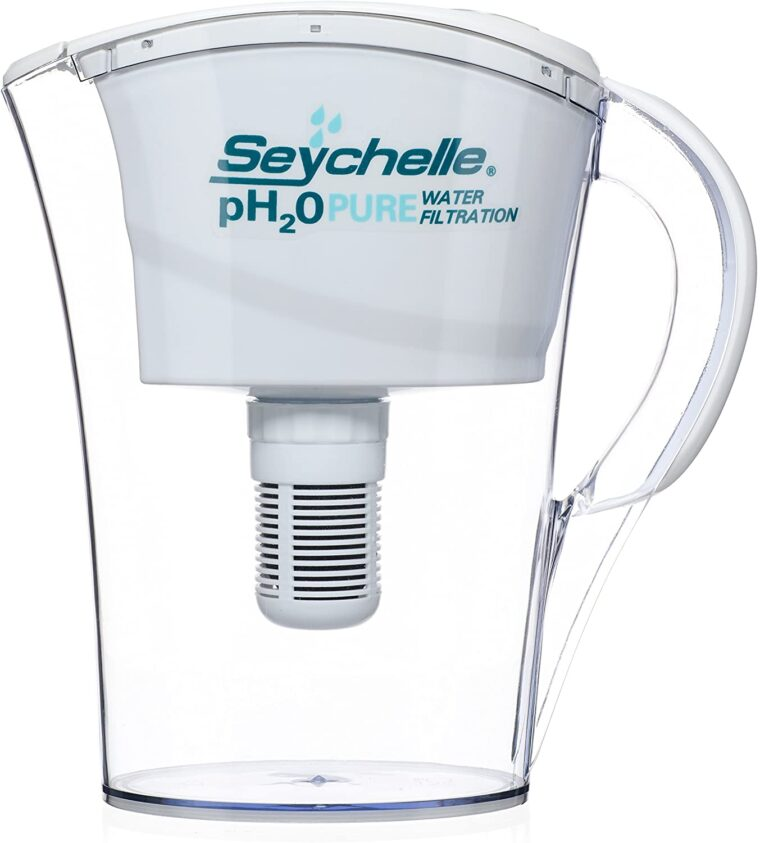 Best Water Filter Pitcher For Well Water 6