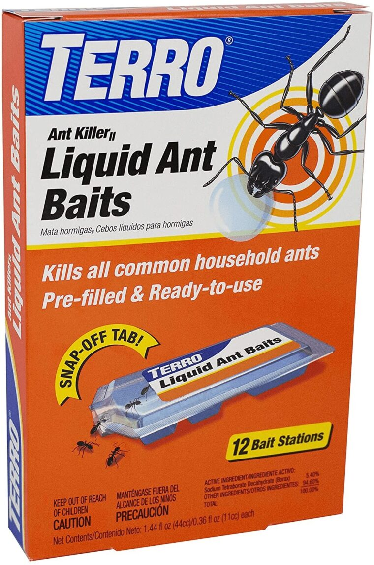 What Are The Best Ant Traps For The Kitchen? 1