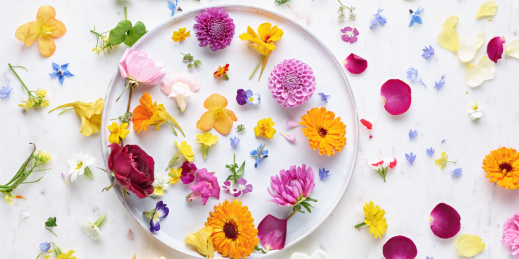 How to Decorate a Cake with Edible Flowers - 2021 Guide 4