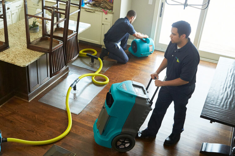What Kind of Services Do Cleaning Services Offer? 7
