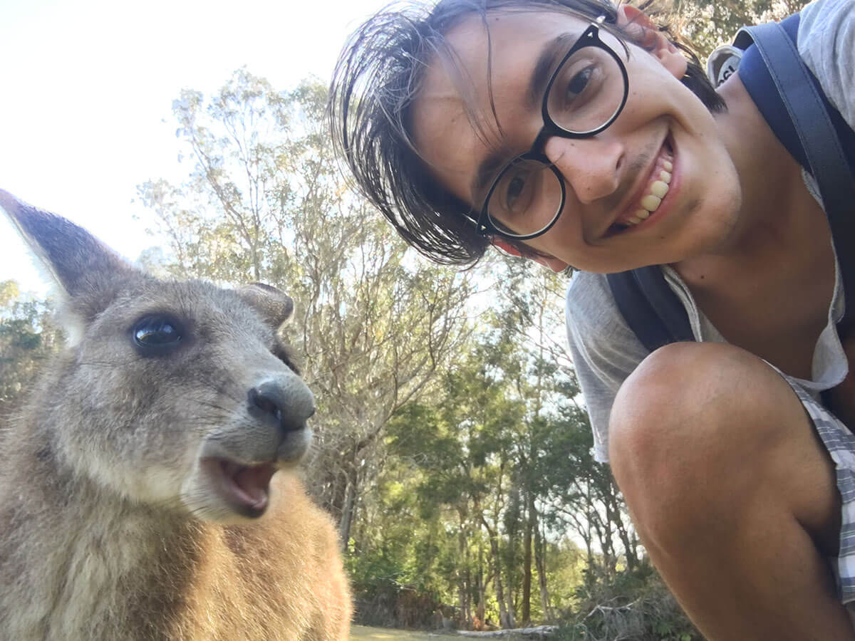 10 Things to know about Australia - Australian animals