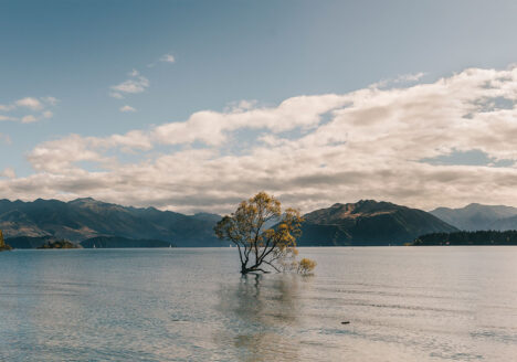 10-places-you-have-to-visit-in-the-south-island-of-new-zealand-wanaka