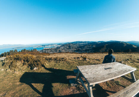 places-you-have-to-visit-in-the-north-island-of-new-zealand-mt-kaukau-view