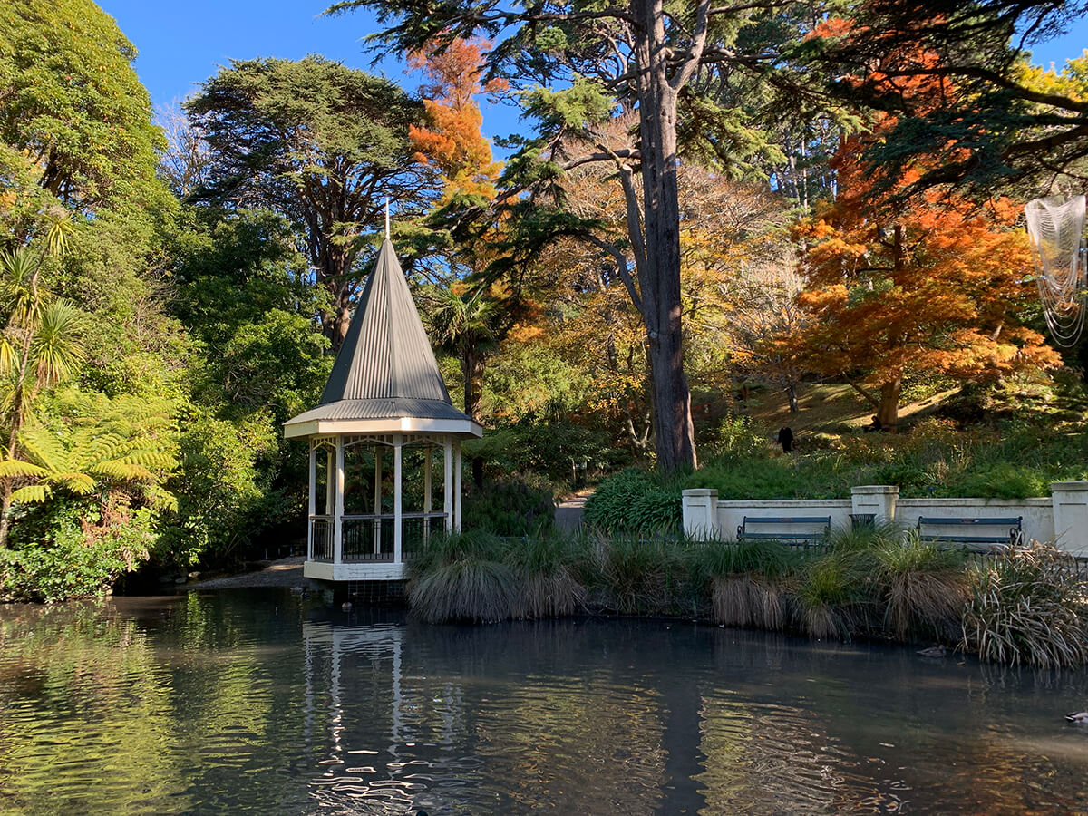places-you-have-to-visit-in-the-north-island-of-new-zealand-wellington-botanical-gardens