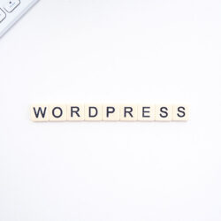 The best WordPress plugins you need for your blog