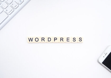 the best wordpress plugin you need to have