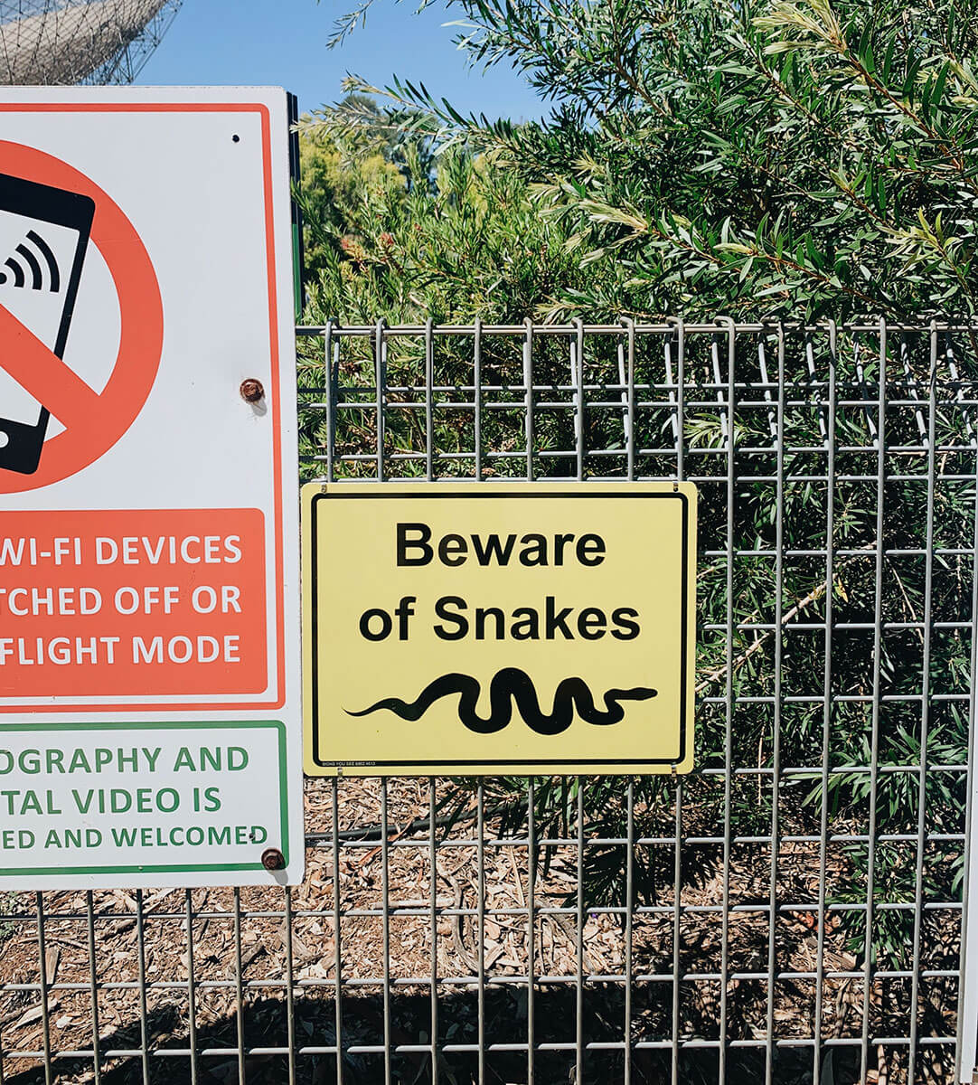 travel-guide-to-parkes snake warning at the dish