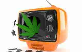 Cannabis leaf in an old television