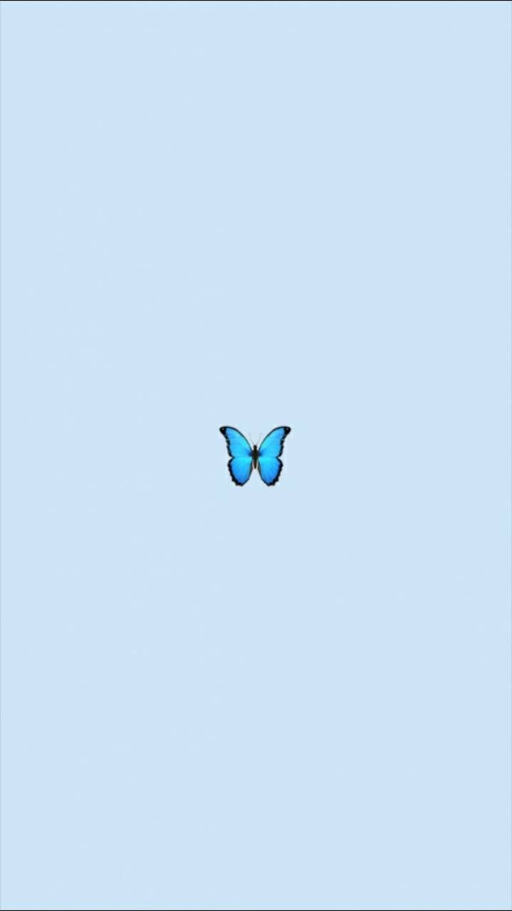 Baddie Aesthetic Tumblr Blue Butterfly Wallpaper Iphone