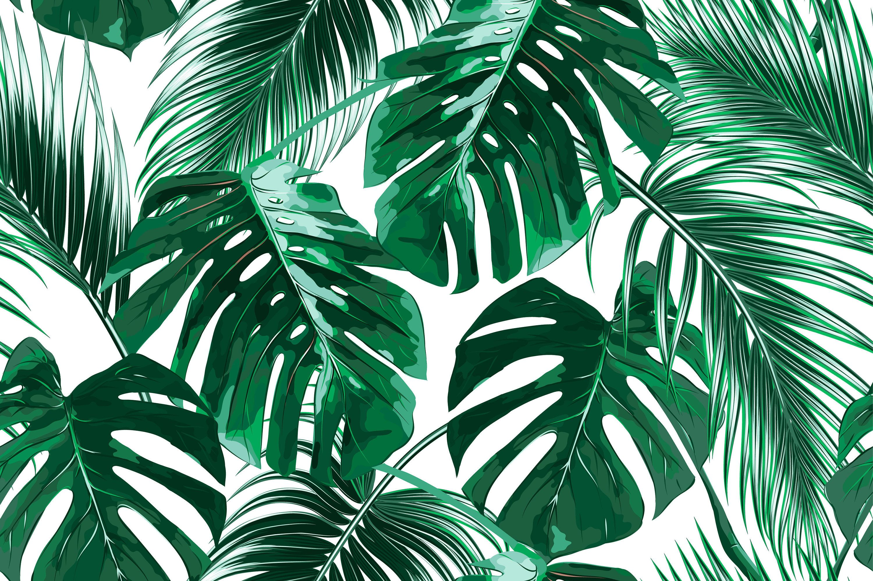 Aesthetic Tropical Leaves Desktop Wallpaper