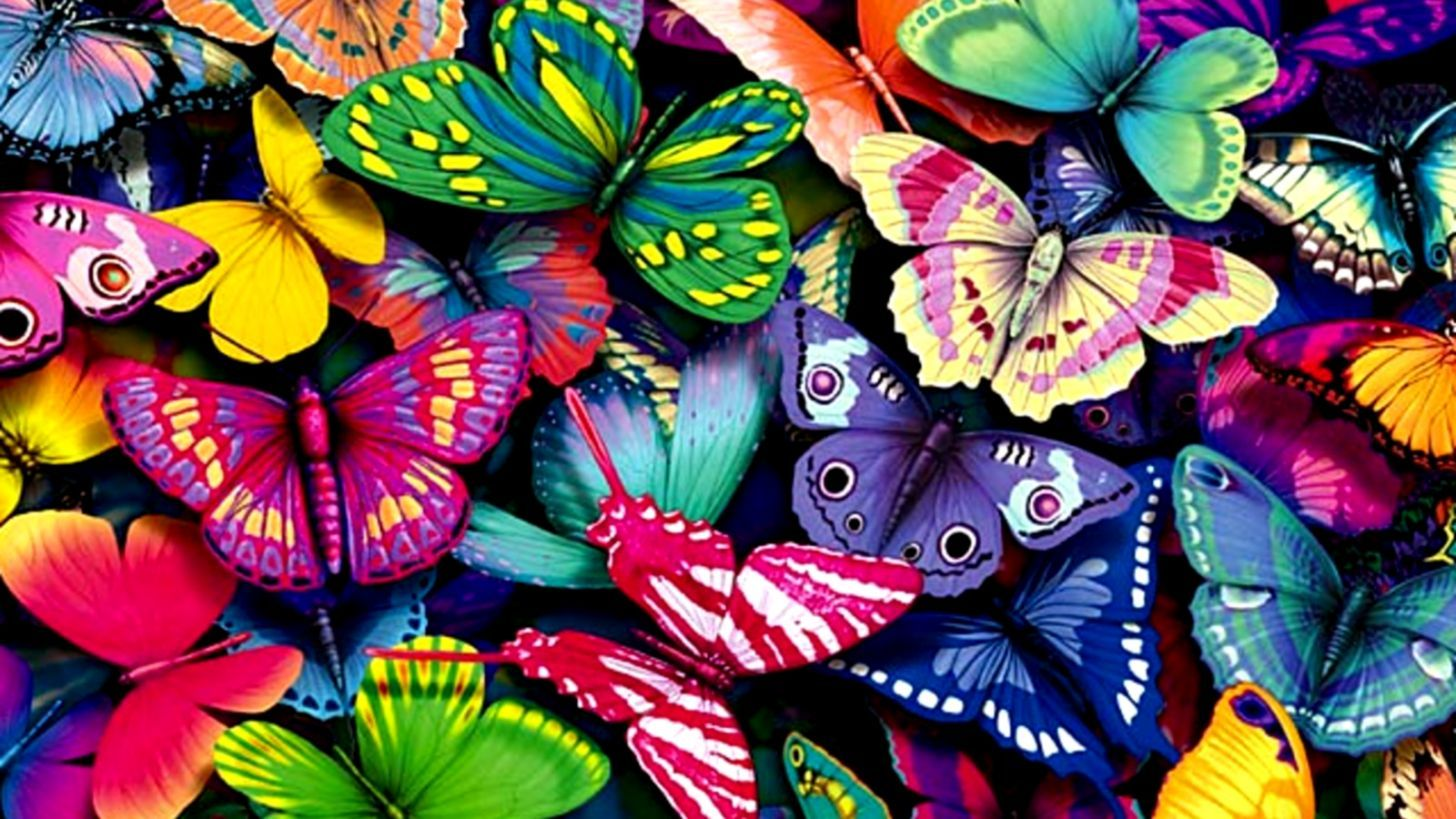 Butterfly Wallpaper Chromebook