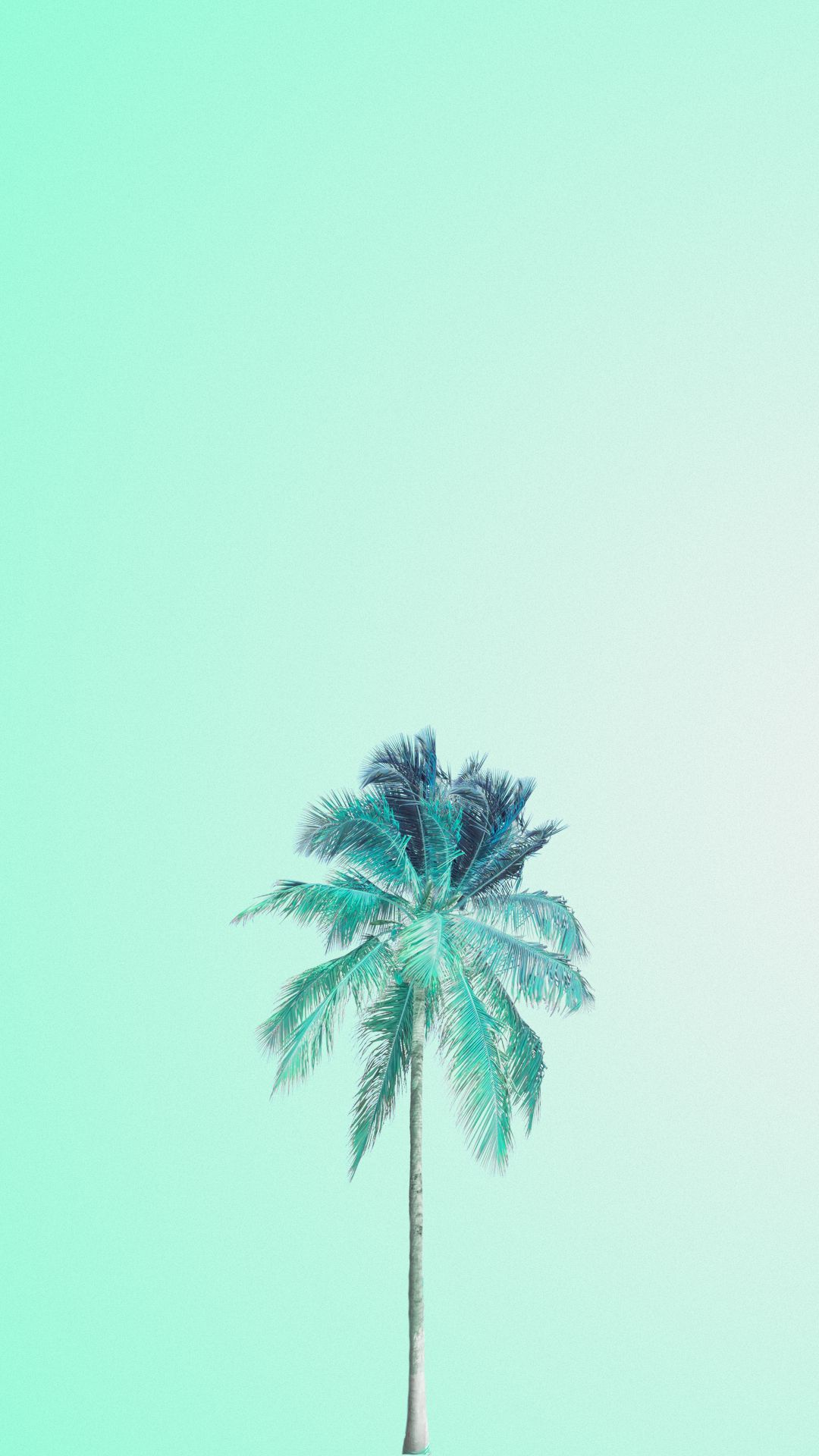 Tumblr Pastel Green Wallpaper Hd