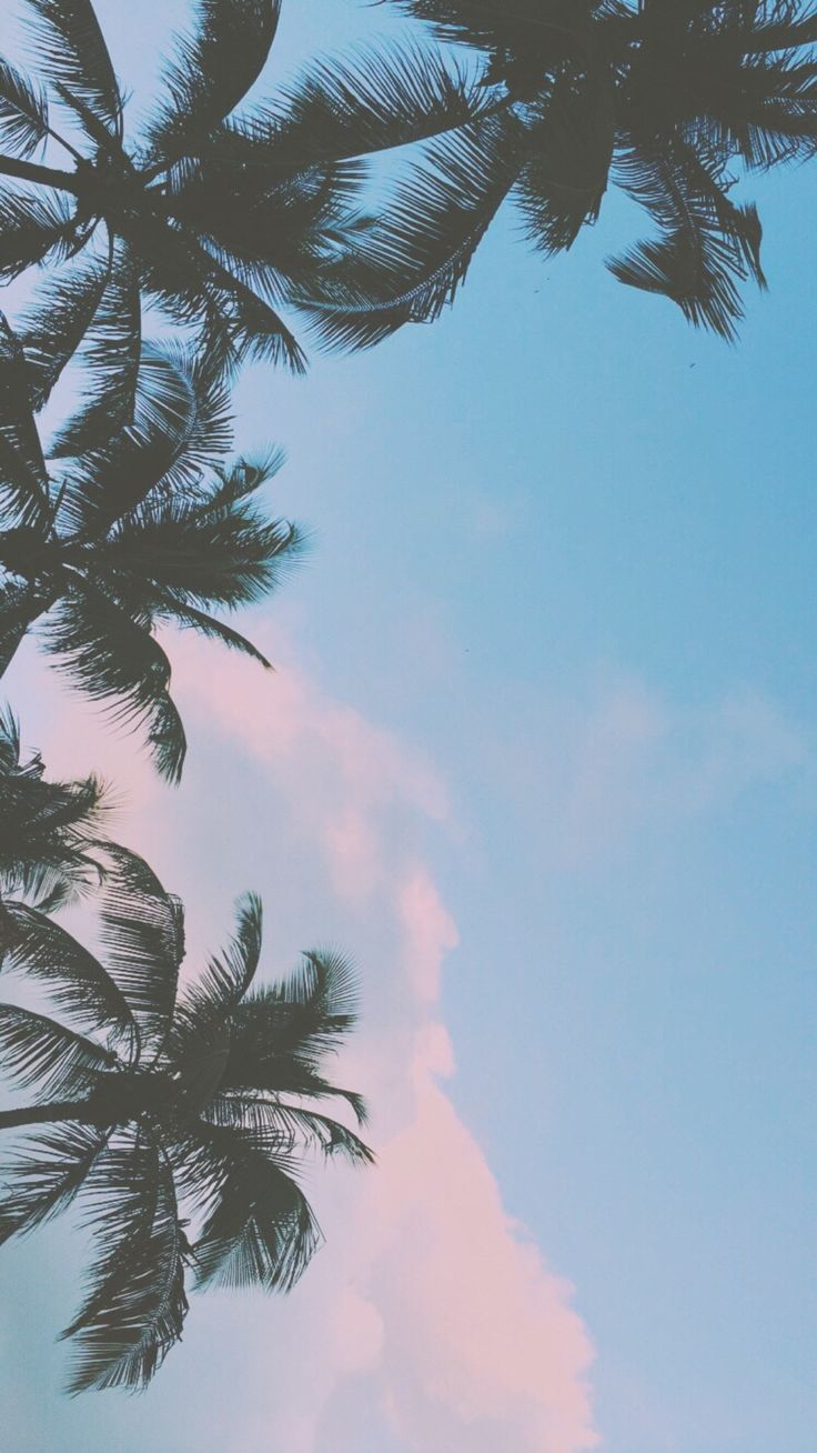 Cute Aesthetic Tumblr Ipad Wallpaper