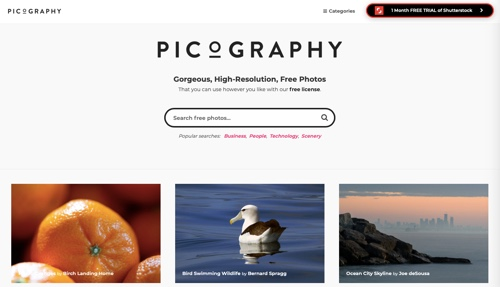 Home page of Picography