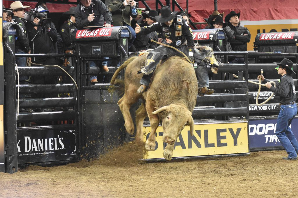 Bull riding rodeo top10 extreme sports