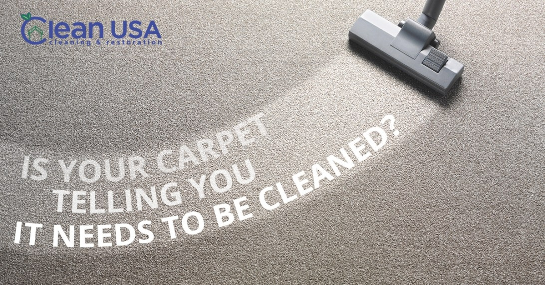 Commercial Cleaning And Home Carpet Cleaners In Sycamore within How Often Should You Replace Carpet