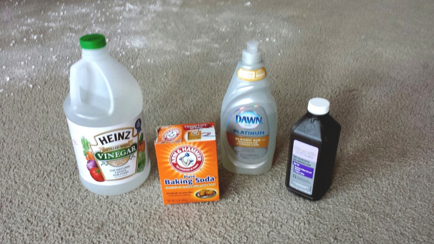 Getting Cat Urine Smell Out Of Clothes - Cat Choices with regard to How To Get Urine Smell Out Of Clothes
