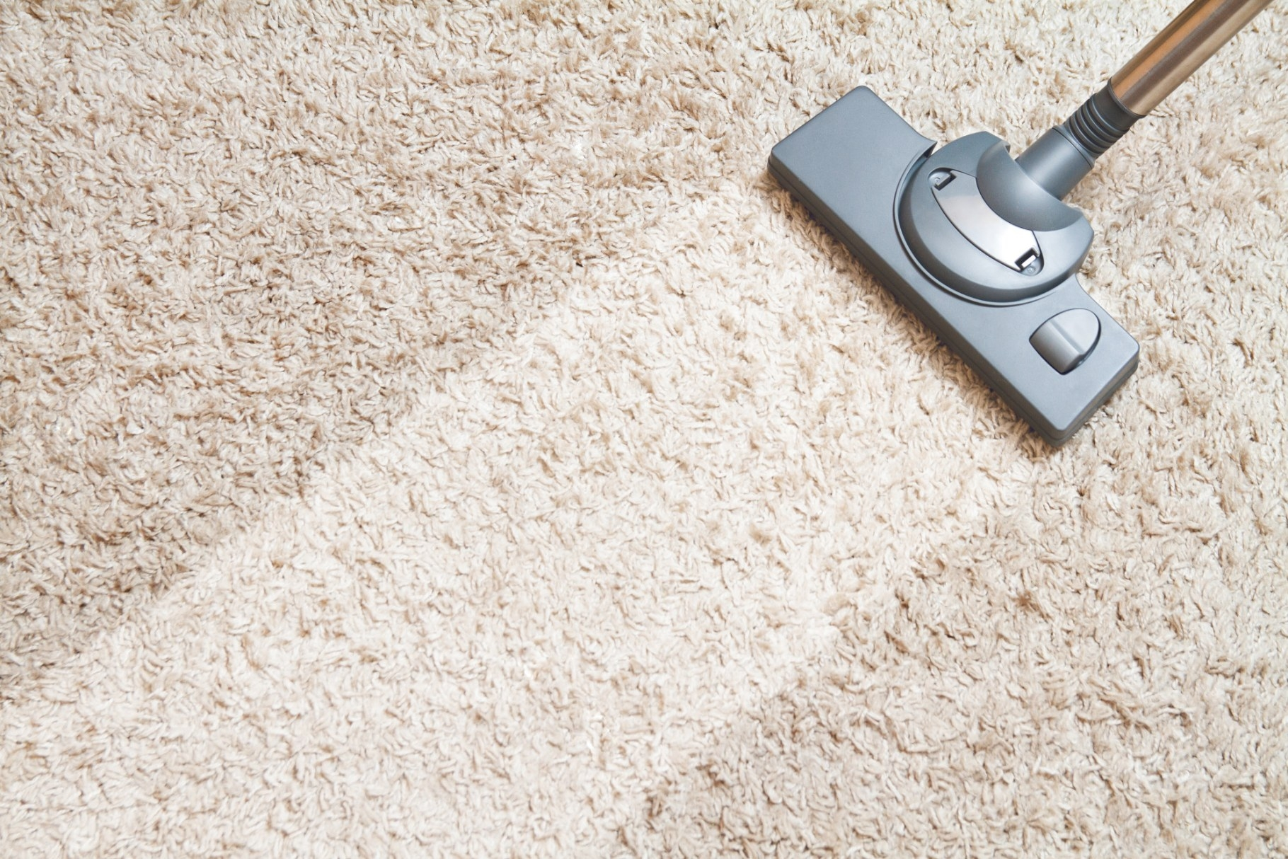 How To Remove Stains From Carpet: The Ultimate Guide with regard to How Often Should You Replace Carpet