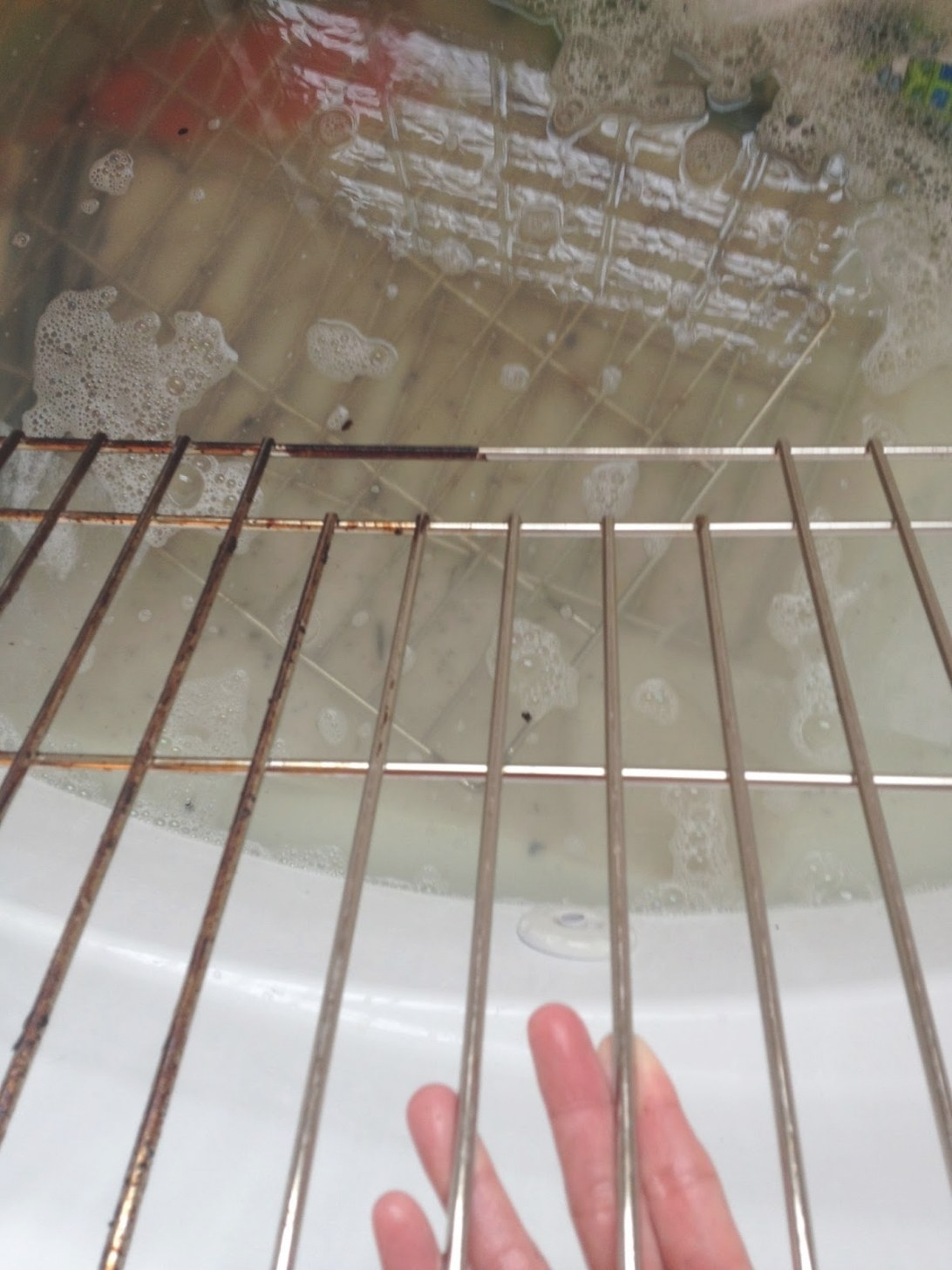Life Love Larson: How To Clean Oven Racks (In The Bathtub!) throughout How To Clean Oven Racks