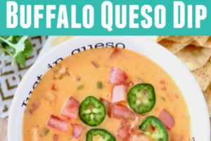 """Queso dip in white bowl with text inside bowl """"Just In Queso"""""""
