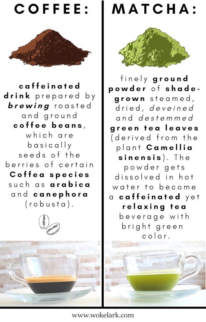 Matcha and coffee definitions comparison.
