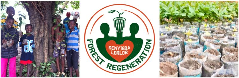 forest regeneration project in Ghana.