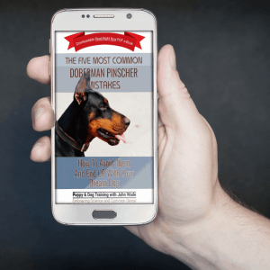 The Five Most Common Doberman Pinscher Mistakes, How To Avoid Them And End Up With Your Dream Dog by John Wade ebook
